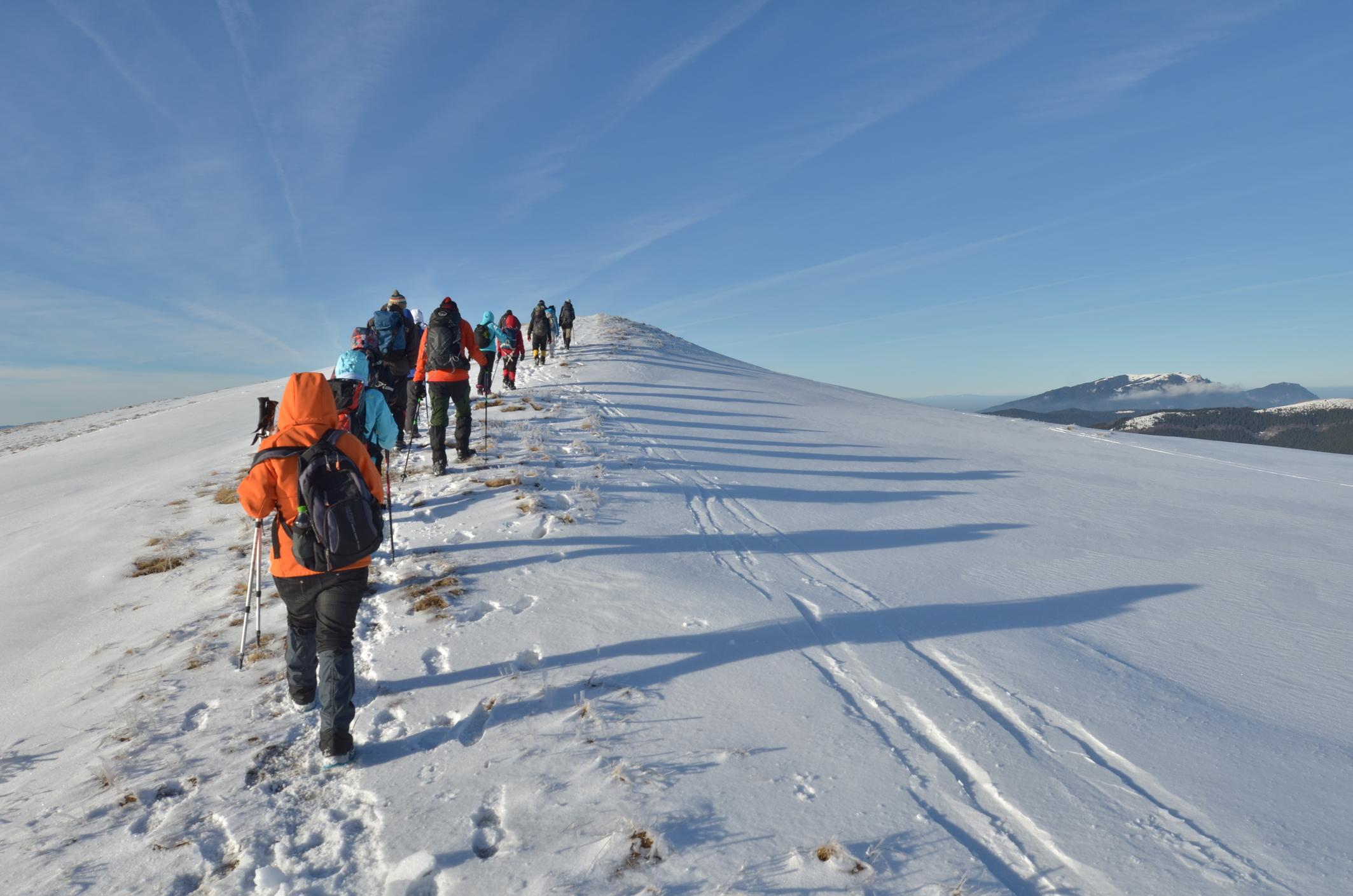 Quatre aspects clés pour optimiser la gestion du Bureau des Guides